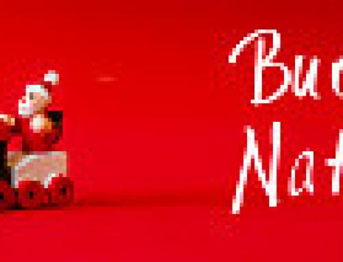 Festicciola natalizia